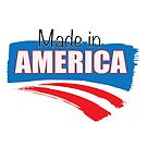 Made in America by Donna Rondeau