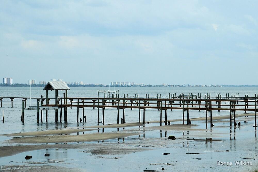 Piers by Donna Adamski