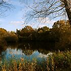 Lakeside by SweetLemon