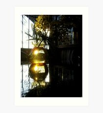 Mimosa's reflections Art Print
