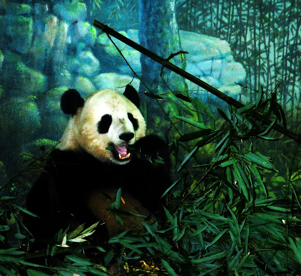 Got Bamboo? by Fritzotic