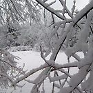 Winters Finest by Lydiapauline