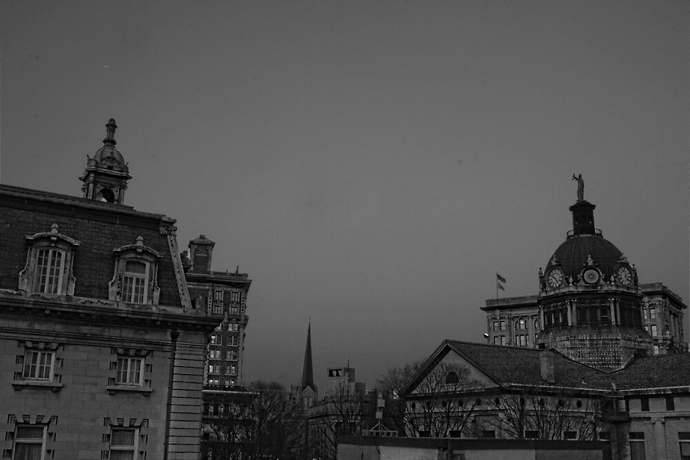 Binghamton Skyline Black and White by GPMPhotography