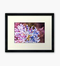 Blue Tiny Flowers Framed Print