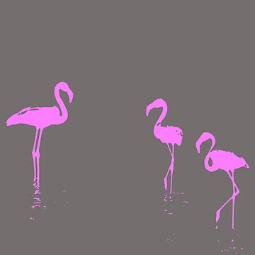 We Are The Three Flamingoes Silhouette In Pink by taiche
