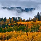 """Misting Afternoon"" Vail, Colorado by AlexandraZloto"