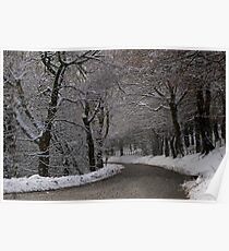 Snow covered woodland tree tunnel over road  Poster
