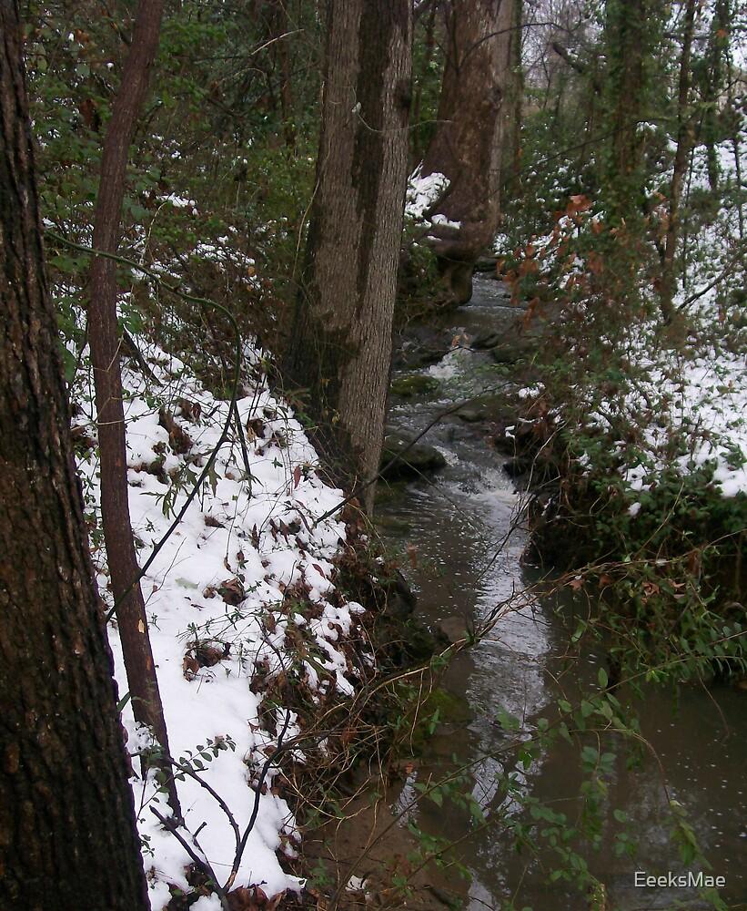 Brushy Creek by EeeksMae