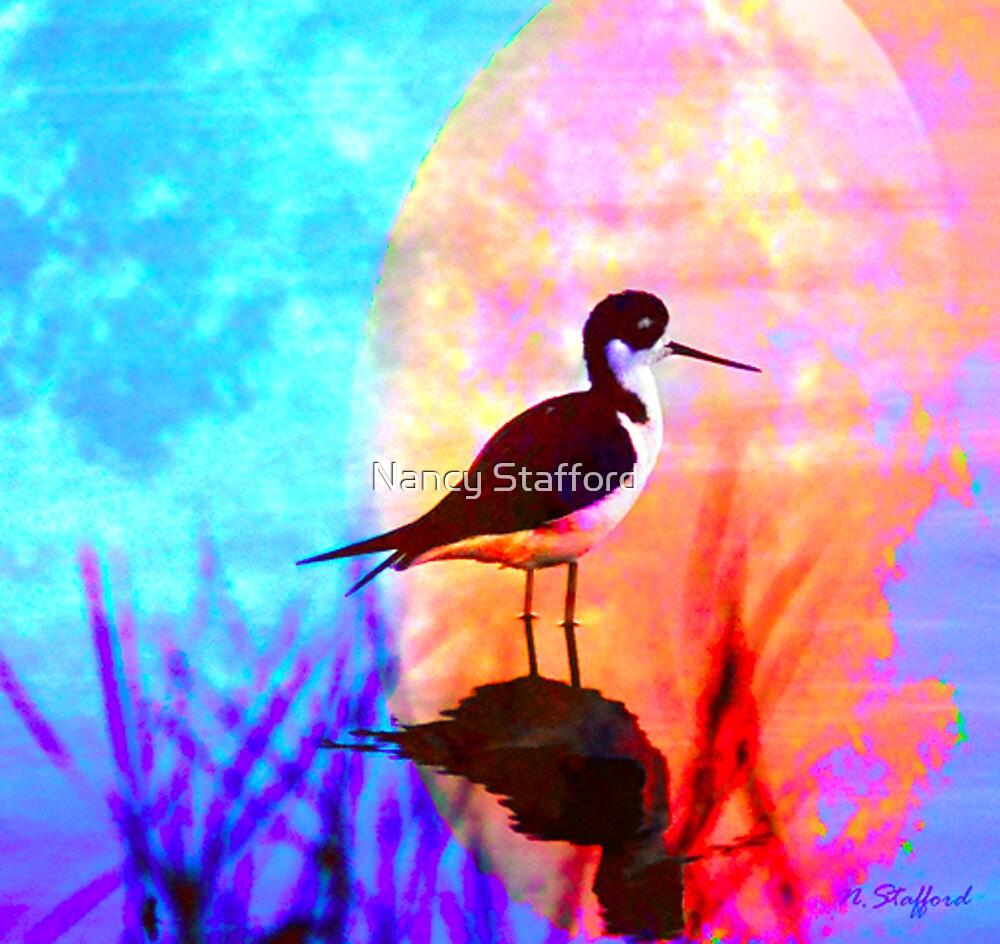 Black Neck Stilt by Nancy Stafford