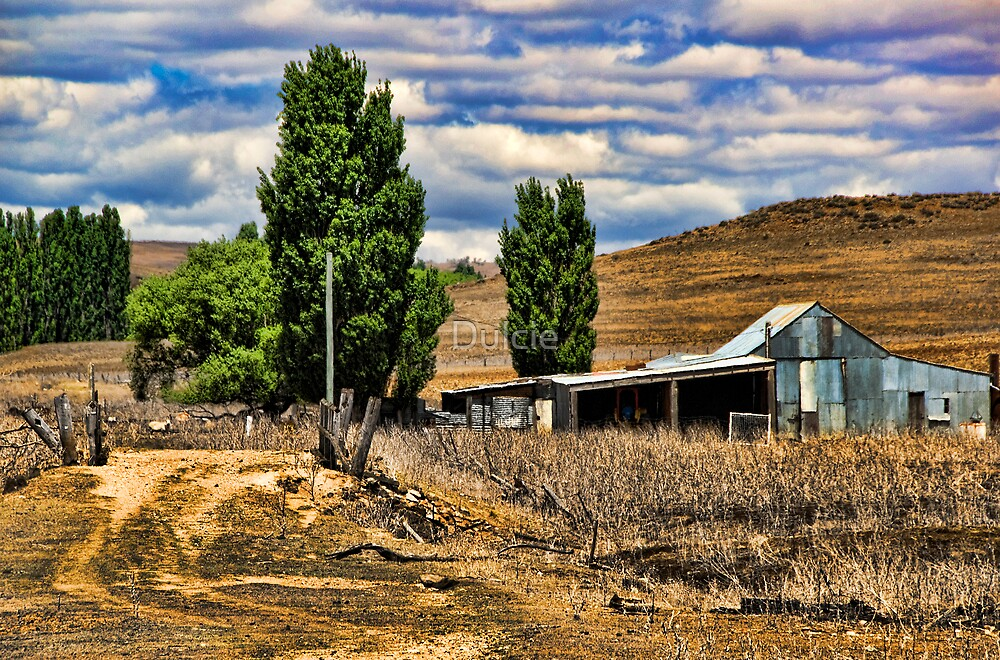 Down Cooma Way by Dulcie