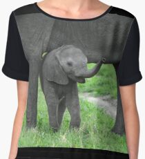 Baby African Elephant with mother Chiffon Top