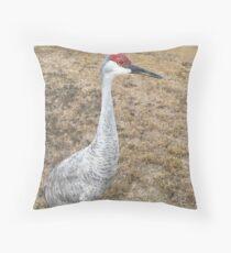 Sand Hill Crane (Hen) Floor Pillow