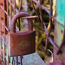 Rusting by mausue