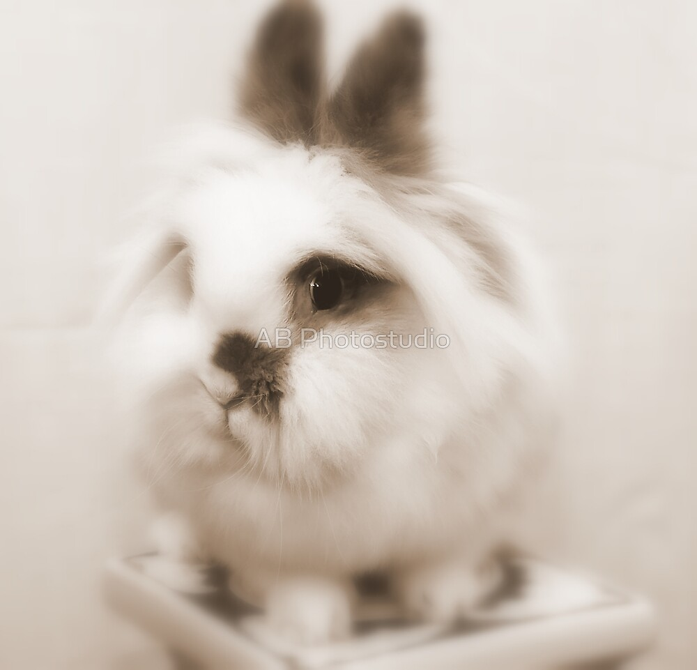 Bunny model by Arve Bettum