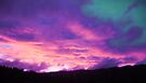 Night Sky pinehill-1 by Beverley  Johnston