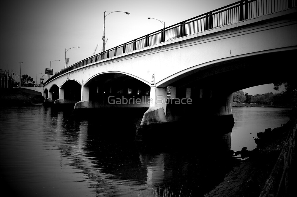 Bridge on the Yarra by Gabriella Surace