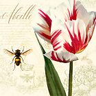 Abeille Natural History Sketchbook I Botanical study bumble bee, tulip by Glimmersmith