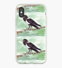 Domino, the Pied Crow (Corvus albus) iPhone Case