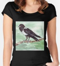 Domino, the Pied Crow (Corvus albus) Women's Fitted Scoop T-Shirt
