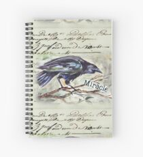 Country Diary - First, Do no harm - Primum non nocere Spiral Notebook