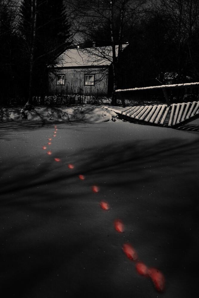 'Dark ways' by Petri Volanen