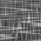 QUANTUM FIELDS ABSTRACT [1] GREY [2] by jamie garrard