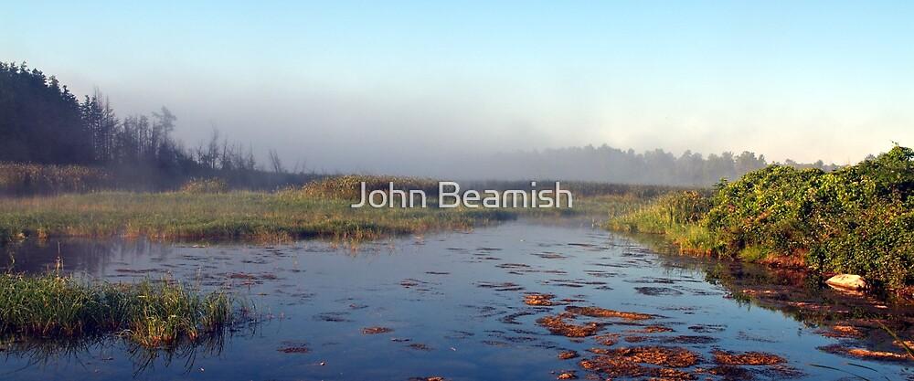 Morning on the Marsh by John Beamish