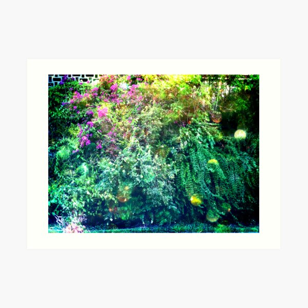 Inside the overgrowth on the side of the school Art Print