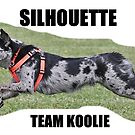 Silhouette Team Koolie, Luca by Koolie Club  of Australia