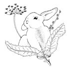 Bunny and Chestnuts by huguette-v