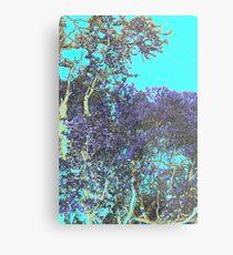 The bush Metal Print