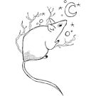 The mouse and the moon by huguette-v