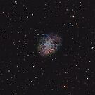 M1 Crab Nebula  by Chuck Manges
