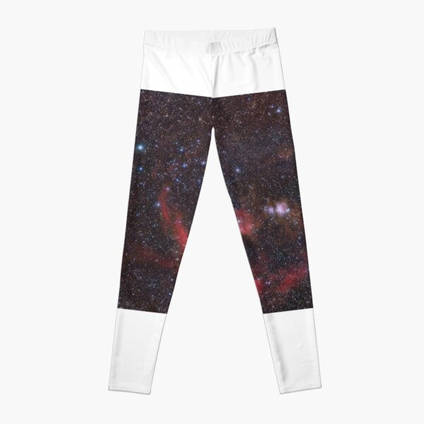 Orion Leggings