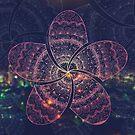 hippie pink frangipani mandala on gold coast night bokeh by faithie
