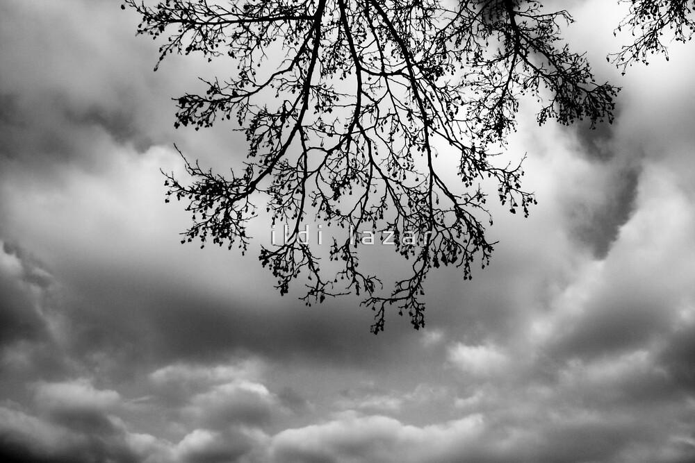 Winter clouds by i l d i    l a z a r