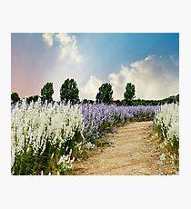 Coloured Landscape Photographic Print