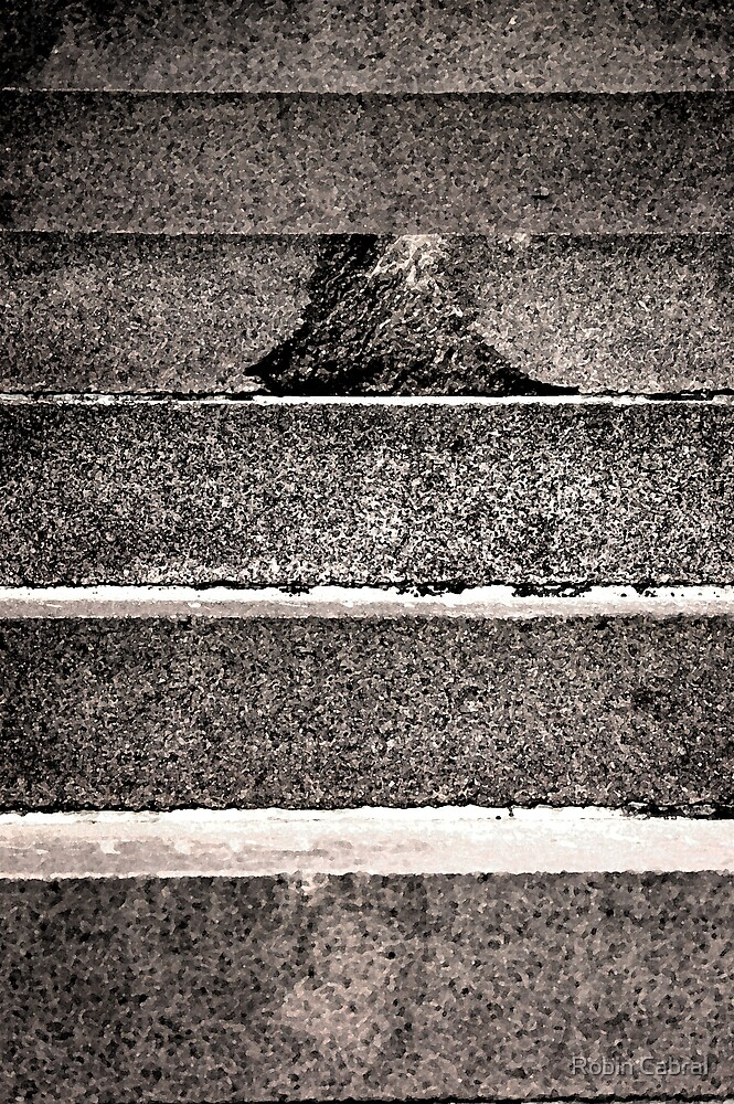 The Fourty Steps by Robin Cabral