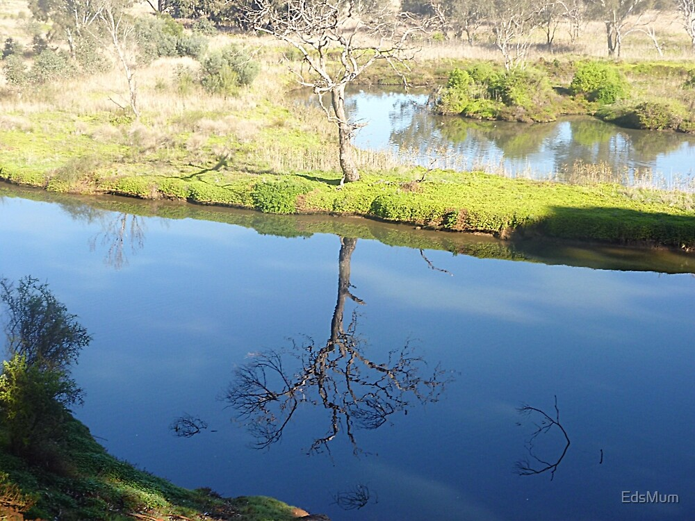 Still beautiful in Reflection - Werribee River. Vic. by EdsMum