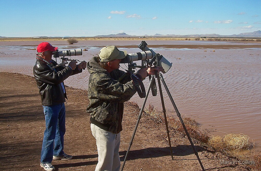 Bird Photographers at Work by Marvin Collins