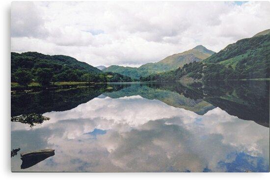 Snowdonia - Wales  by Carl Gaynor