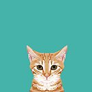 Tabby orange cat head cat breed gifts cute tabby cats must haves by PetFriendly