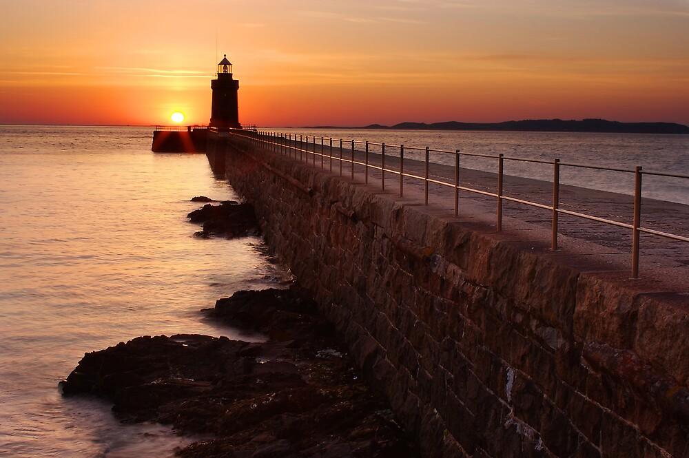 Summer Dawn by PhotoToasty