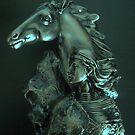 Horse Woman by Dawn B Davies-McIninch