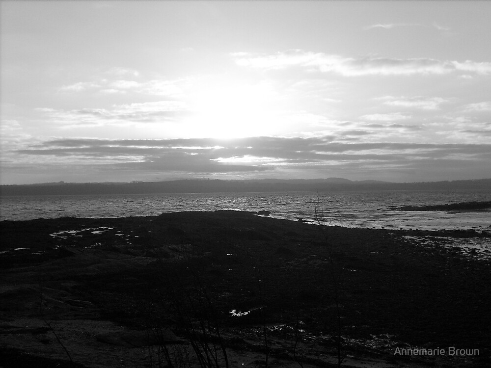 black and white sunset by Annemarie Brown