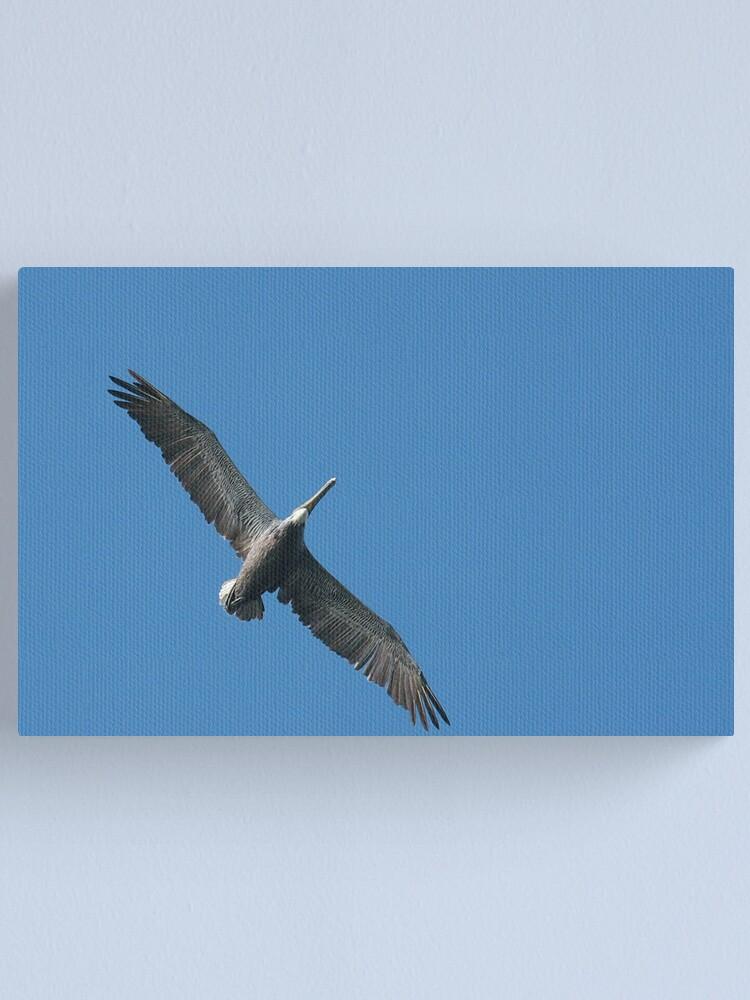 Alternate view of Pelican Flight Canvas Print