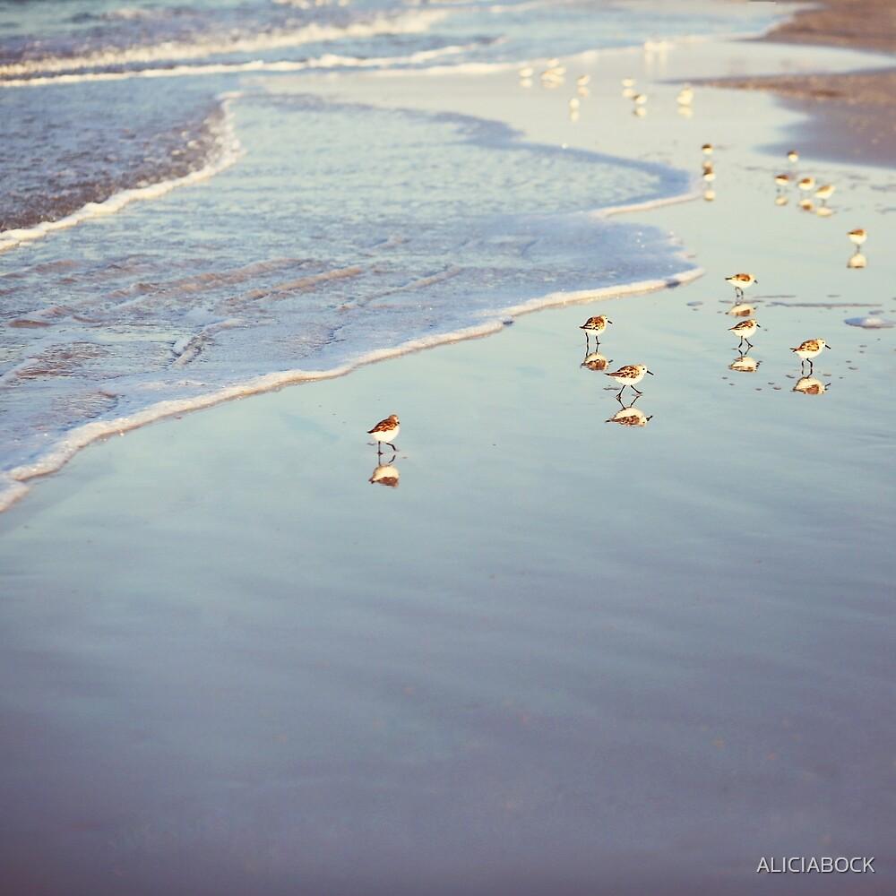 Early Birds by ALICIABOCK
