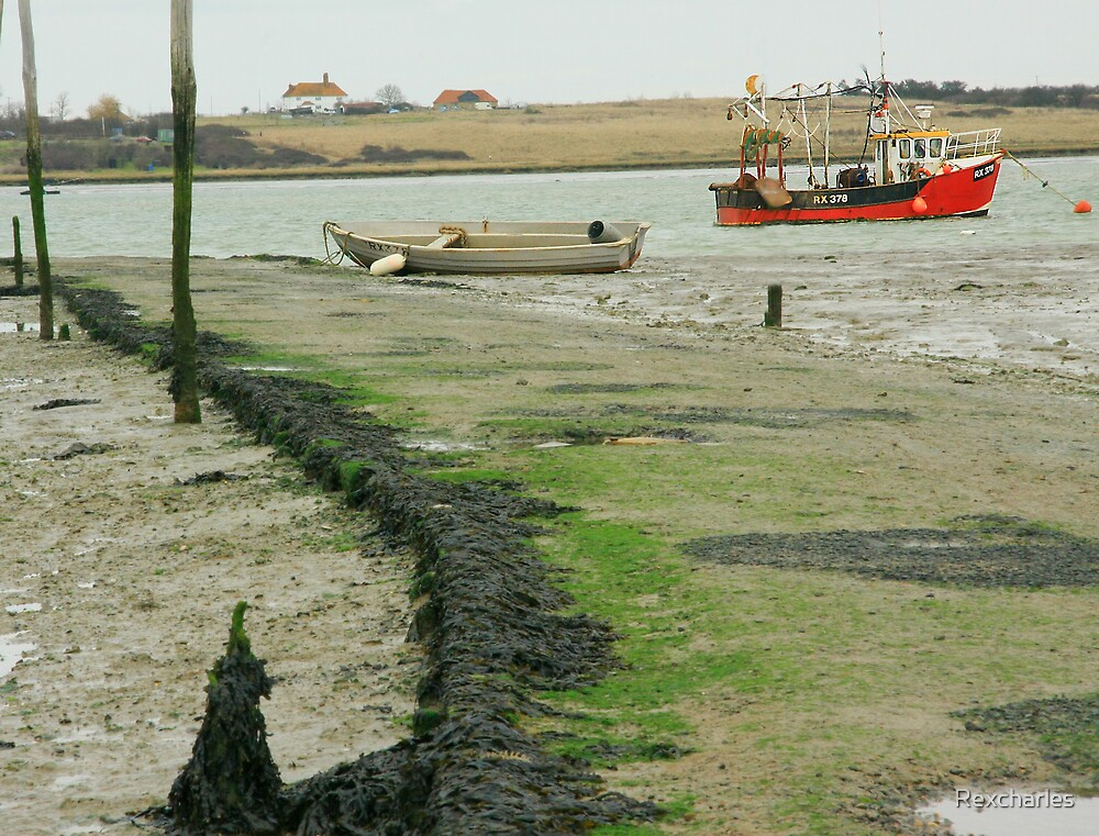 TIDE OUT by Rexcharles