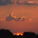 A Missouri Sunset by Kat Miller