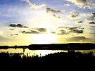 The Twilight lake by Beverley  Johnston